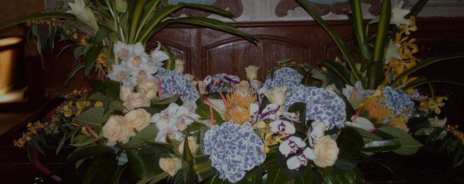 livraison de fleurs sens au cyclamen. Black Bedroom Furniture Sets. Home Design Ideas